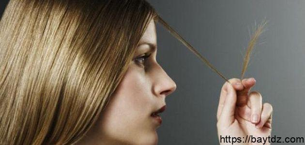 كيفية التخلص من تقصف الشعر
