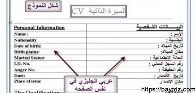 كيفية عمل سيرة ذاتية بالعربية