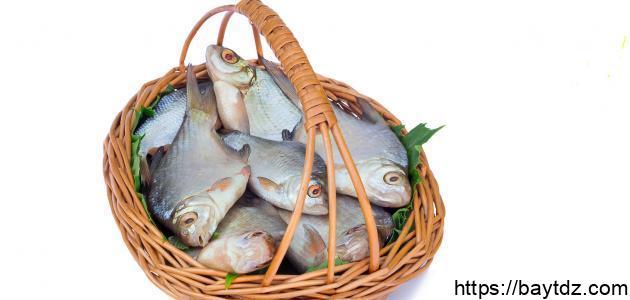 ما فوائد السمك