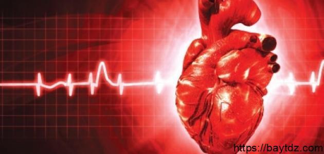 ما هو نبض القلب الطبيعي