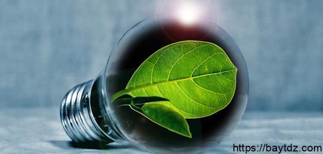 ما هي البيئة المستدامة