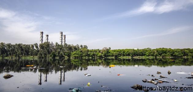 ما هي المضار المترتبة على تلوث الماء بيت Dz
