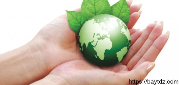 وسائل حماية البيئة من التلوث
