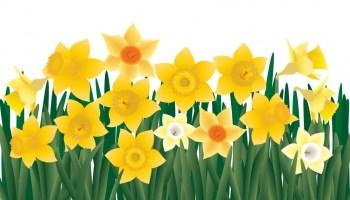 St Anselm Church Spring Fling Craft Sale Tomorrow