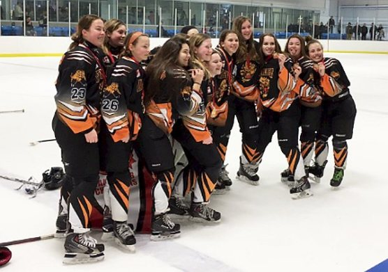 Jubilant Orangeville Tigers sneaked by a Leaside Wildcats Bantam BB team 2 to 1