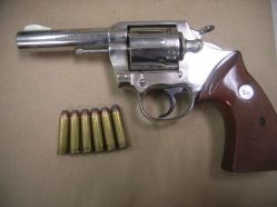 Gun, drugs seized
