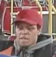 bus theft 3