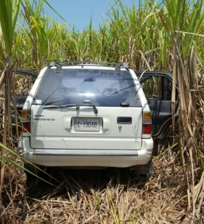 Abandoned in sugarcane field