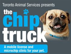 woofstock chip truck