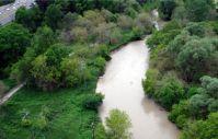 Swollen Don River/Rudy Limeback