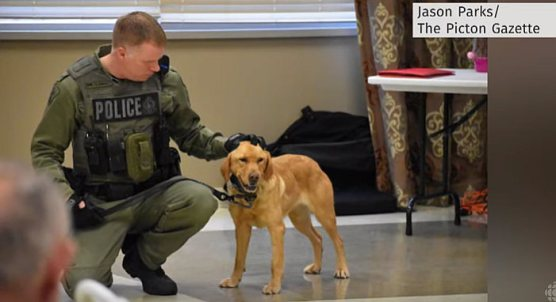 Officer Scott Gannon and sniffer dog Zoe