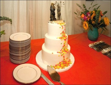 WeddingCake5