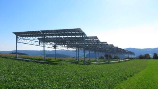 BayWa r.e. and project partners open Agrophotovoltaic-System
