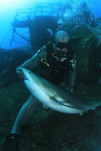 DIVING_0115_INTERVIEW-0005