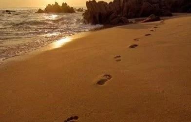 Urme de pași