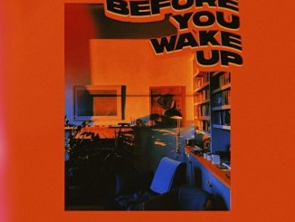 Adekunle Gold – Before You Wake Up Mp3 Download