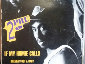 2Pac - If My Homie Calls (R&B Turbo Mix) Mp3 Download