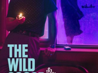 DOWNLOAD Movie: The Wild Goose Lake (2019) [Chinese]
