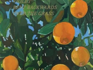 DOWNLOAD ALBUM: Lana Del Rey – Violet Bent Backwards Over The Grass [Zip File]