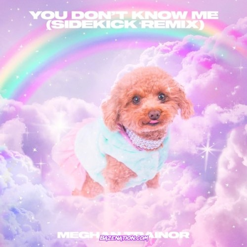 Meghan Trainor & Sidekick - You Don't Know Me (Sidekick Remix) Mp3 Download