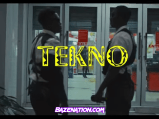DOWNLOAD VIDEO: Tekno - Enjoy
