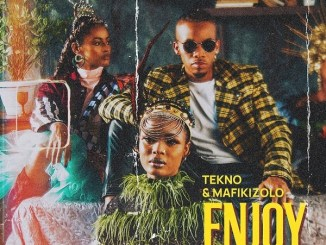 Tekno – Enjoy (Remix) Ft. Mafikizolo Mp3 Download