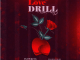 Flowking Stone - Love Drill Mp3 Download