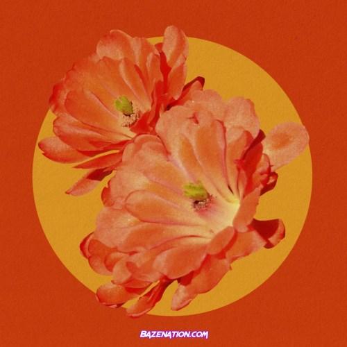 Fana Hues – Desert Flower Remix (feat. Mereba) Mp3 Download