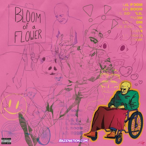 Lil Boom - Bloom of A Flower Mp3 Download