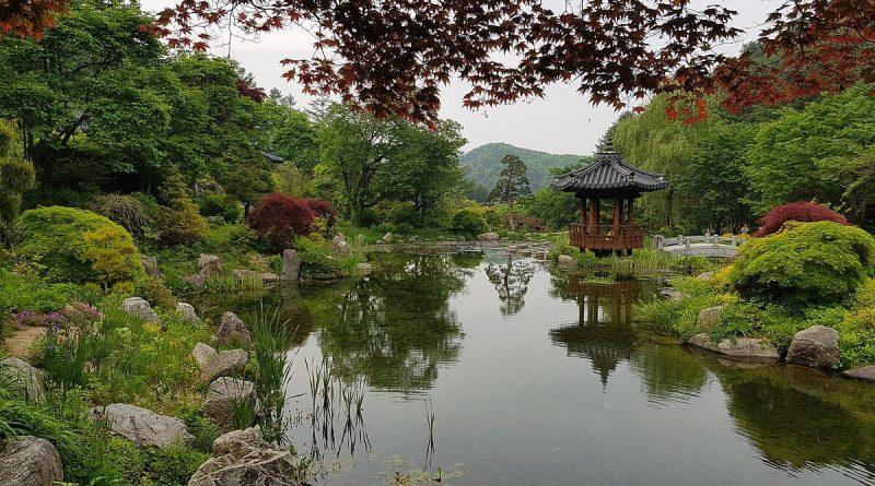 Séjour Corée plein air