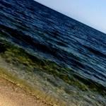 琵琶湖 キャッチアイ