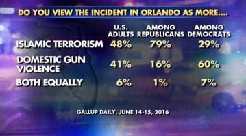 Poll Shows 41% Believe Orlando Attack Domestic Gun Violence