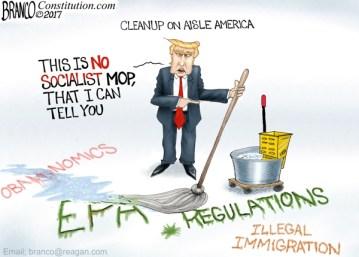 Political Cartoon: Cleaning Up Obama's Destructive Agenda