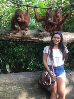 The Singapore zoo where you can get up and close with monkeys and other animals!