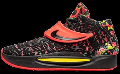 Nike KD 14 survey