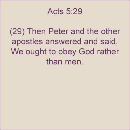Image result for acts 5 29