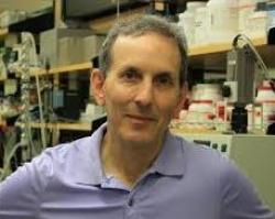 Daniel J. Drucker