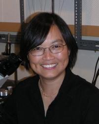 Zhong-Ping Feng