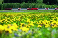 Suíça - Glacier Express - flores