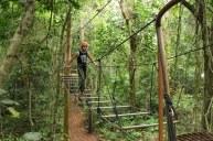 Arvorismo no Parque Nacional do Iguaçu