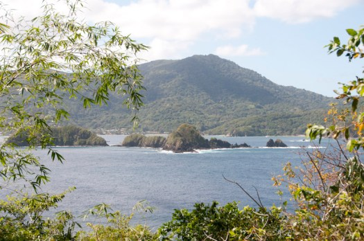 A view from Little Tobago.