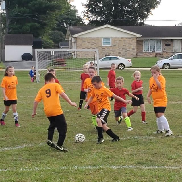 Fall Soccer League