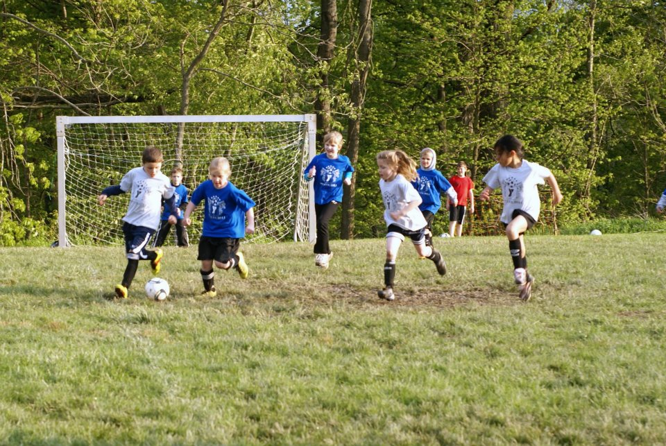 Fall Soccer League