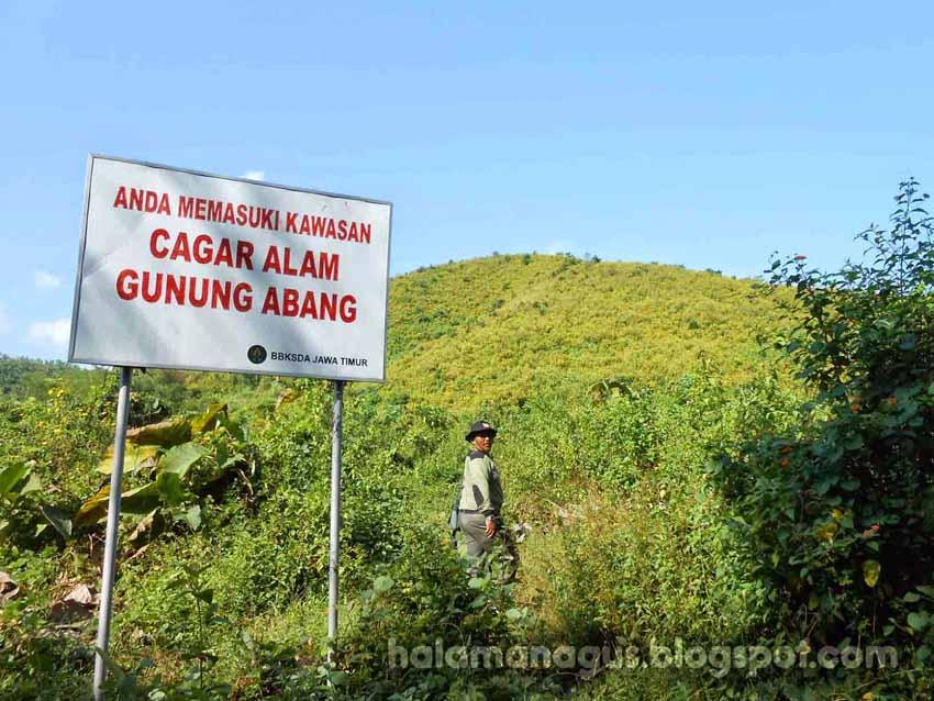 CaGAbang