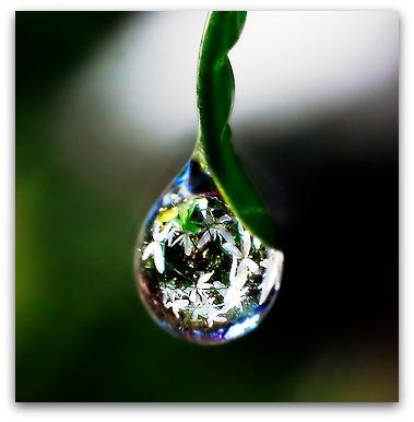 Giornata mondiale dellacqua  Storia di una piccola goccia dacqua