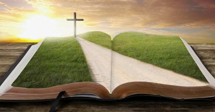 Base Bíblica - Samuel Montoya