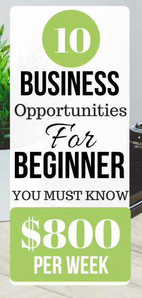 Business Opportunities For Beginner