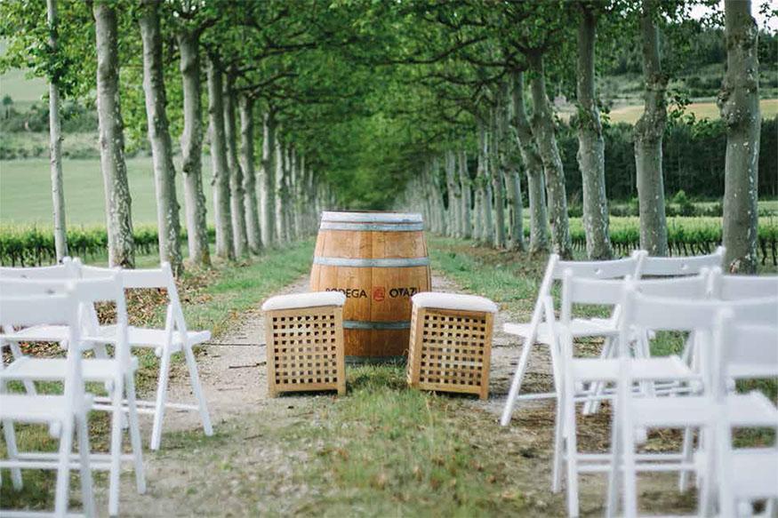Resultado de imagen de viñedos otazu