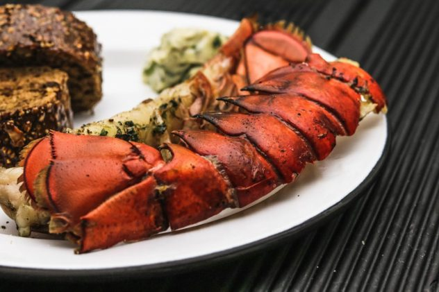 Hummer-Lobster-vom-Grill-12