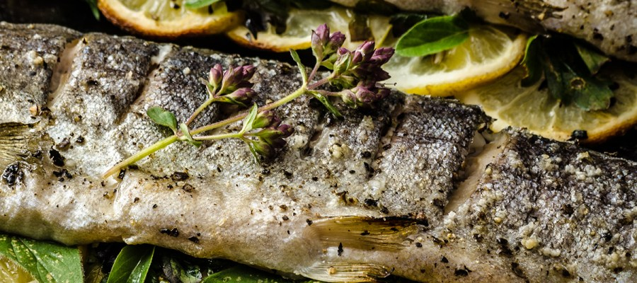 Grilled trout with charred lemons and garnish topping